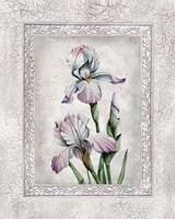 Floral IV Fine Art Print