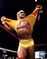 Hulk Hogan in action Framed Print
