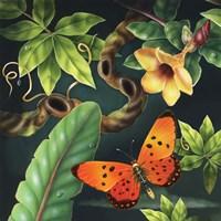 Acrea Fine Art Print