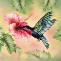 Purple-Throated Carib Fine Art Print