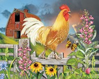 Yellow Rooster Greeting The Day Fine Art Print