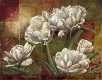 Praise I-Tulips Framed Print