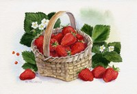 Basket Of Strawberries Fine Art Print