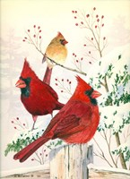 Cardinals In Winter Fine Art Print
