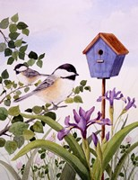 Chickadees And Iris Fine Art Print