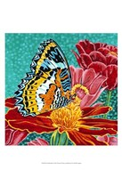 Poised Butterfly I Fine Art Print