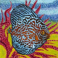 Brilliant Tropical Fish II Fine Art Print