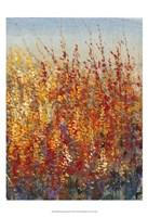 High Desert Blossoms II Fine Art Print