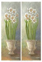 2-Up Narcissus Vertical Fine Art Print