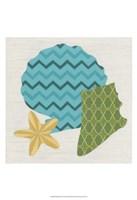 Shell Patterns II Framed Print