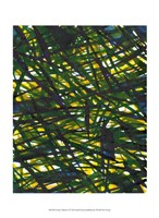 Green Thicket I Fine Art Print