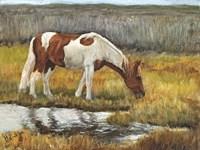 Meadow Munching Fine Art Print