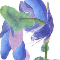Surprise Indigo II Fine Art Print