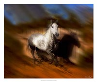Blazing Horse III Fine Art Print