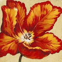 Parrot Tulip I Framed Print