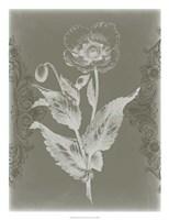 Floral Relief II Framed Print