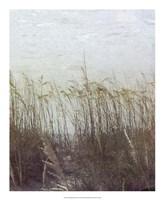 Through the Dunes II Fine Art Print