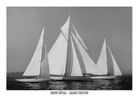 Sailing Together Fine Art Print