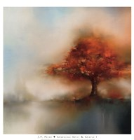 Morning Mist & Maple I Fine Art Print
