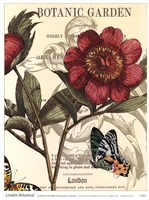 London Botanical Fine Art Print
