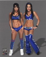 The Bella Twins 2014 in blue Framed Print