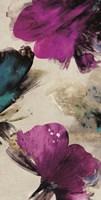 Midsummer Blooms II Framed Print