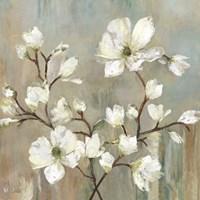Sweetbay Magnolia II - Mini Fine Art Print