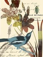Exotic Blossom I Fine Art Print