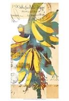 Cortez Gold I Fine Art Print