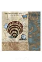 Botticelli Shell II Framed Print