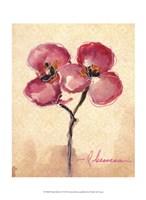 Orchid Sketch I Fine Art Print