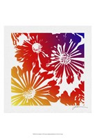 Floral Brights II Fine Art Print