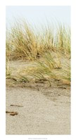 Dunes I Framed Print