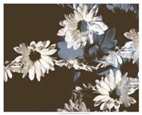 Chocolate Bloom II Framed Print