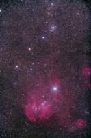 NGC 3766 and the Lambda Cen Nebula in the constellation Centaurus Fine Art Print