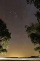 The Orion constellation between trees, Buenos Aires, Argentina Framed Print