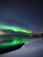 Aurora Borealis over Vagsfjorden in Troms County, Norway Fine Art Print