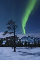Moonlight and aurora over Nova Mountain Wilderness, Norway Fine Art Print