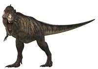Tyranosaurus Rex Fine Art Print