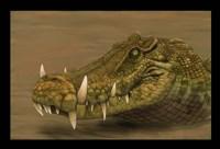 Kaprosuchus saharicus head detail Fine Art Print