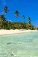 Beach, Desroches Resort, Desroches Island, Seychelles Fine Art Print