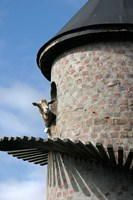 Fairview winery, goat tower, Paarl, South Africa Fine Art Print