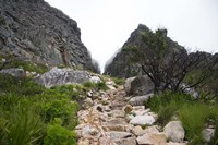 Hiking Up Table Mountain, Cape Town, Cape Peninsula, South Africa Fine Art Print