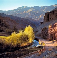 Afghanistan, Bamian Valley, Dirt road and stream Fine Art Print