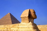 Close-up of the Sphinx and Pyramids of Giza, Egypt Fine Art Print