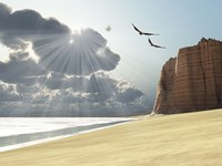 Sunlight shines down on two birds flying near a cliff by the ocean Fine Art Print
