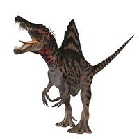 Spinosaurus dinosaur Fine Art Print