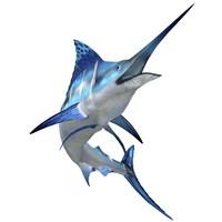 Blue Marlin Fine Art Print