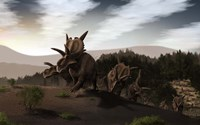 Herd of Xenoceratops foremostensis from the Cretaceous Period Fine Art Print