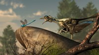 An Archaeopteryx stalks a dragonfly on a rock Fine Art Print